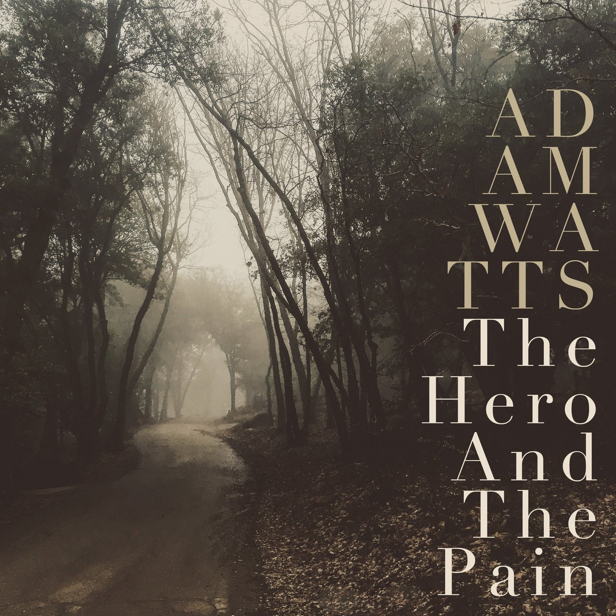 Adam Watts - The Hero And The Pain